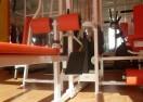 Bodybalance 5